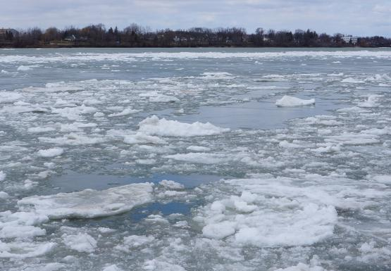 Ice chokes the river near the breakwall.