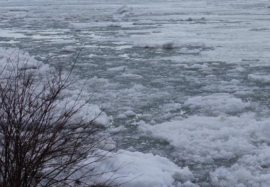 Ice from Lake Erie in the Niagara River, overlooking the Peace Bridge