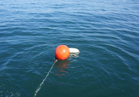 An orange float and a white float attached to a rope in the water