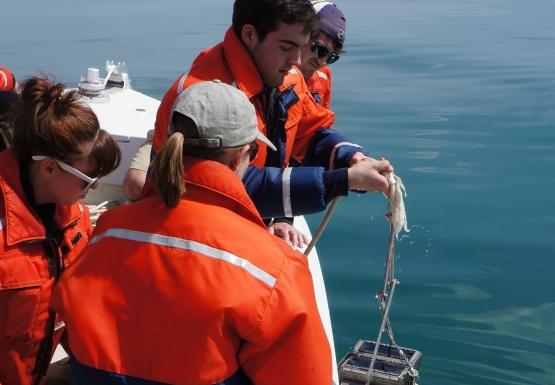 Students collected a benthic grab using a ponar