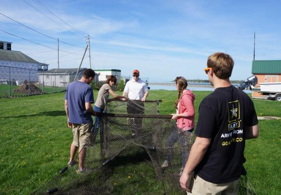 A group of people hold up a box-shaped net on land