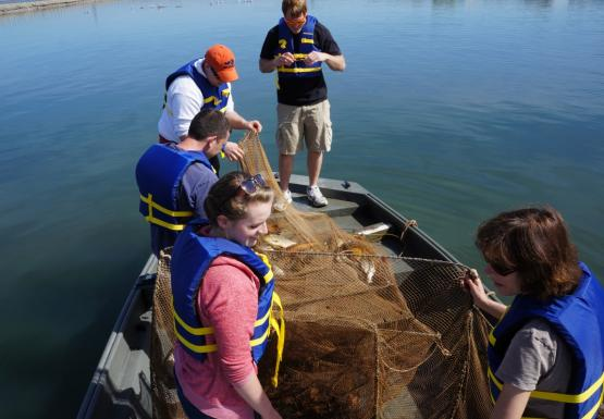 Students with life jackets stand in a boat around a large net that has some fish in it