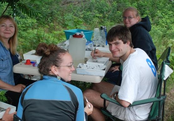 Five people work on samples in small white trays at a portable table and pop-up tent.