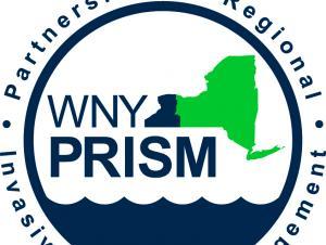 WNY PRISM logo