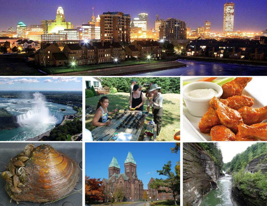 collage of pictures of Buffalo, NY skyline, Niagara Falls, people at a picnic table covered in mussels, buffalo wings, a mussel, a brown stone building with two towers with green roofs, and a gorge with a river
