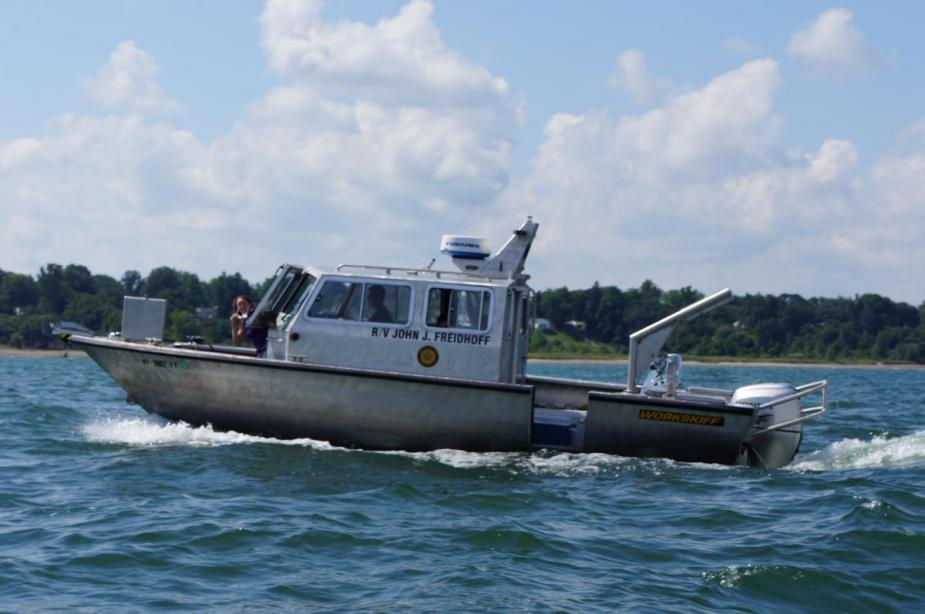 An aluminum-hulled boat throwing wake in Lake Erie. A woman peeks out of the front of the boat.
