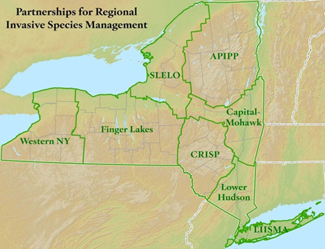Western New York State Map.Wny Prism Great Lakes Center Buffalo State