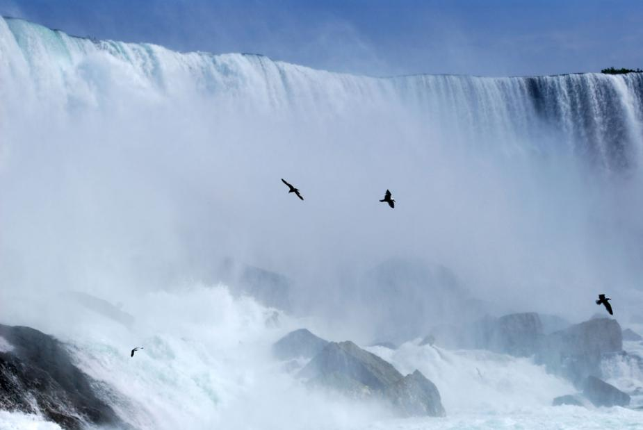 birds flying through the mist at the bottom of Niagara Falls